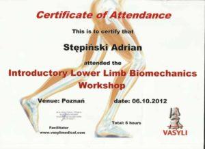certyfikat vasyli