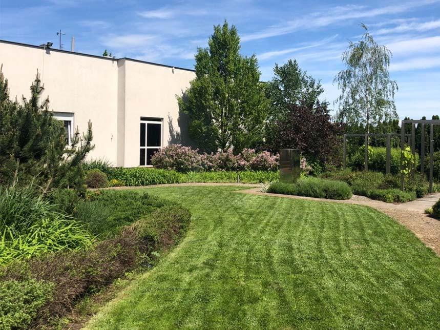 Solumed ogród